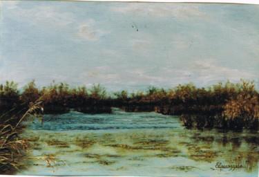 070-paysage-camarguais-4p.jpg