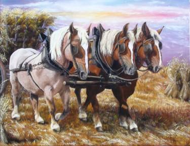 293-chevaux-force-3.jpg